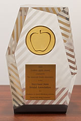 The Golden Apple Award for excellence in dentist well being activities
